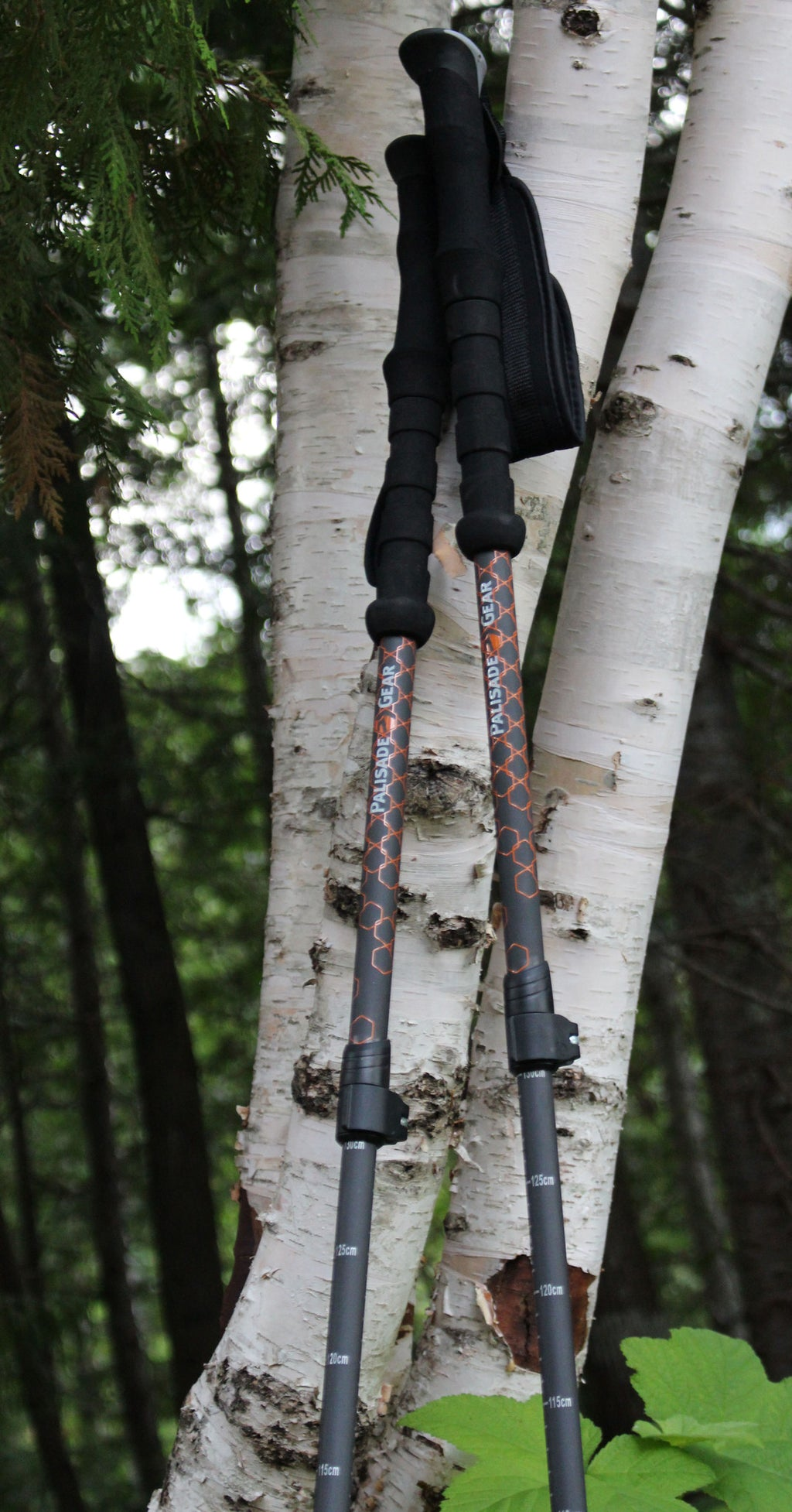 Ultra Light 100% Carbon Trekking Poles with Flip Lock Quick Adjust and Comfort Grips