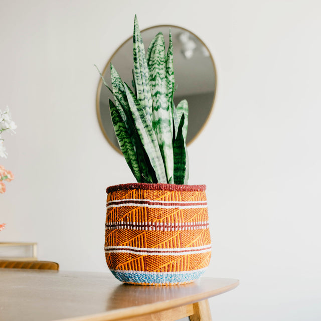Baskets make great planters and add texture to your space. This is also a great way to add a pop of color in any interior.