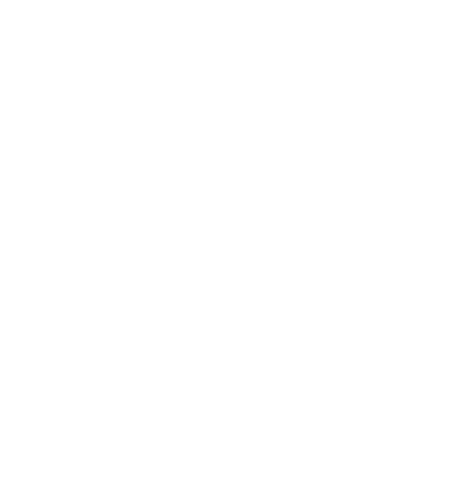 Soul Shoes NZ