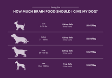 Load image into Gallery viewer, Brain Food - Bovine Brain for Dogs