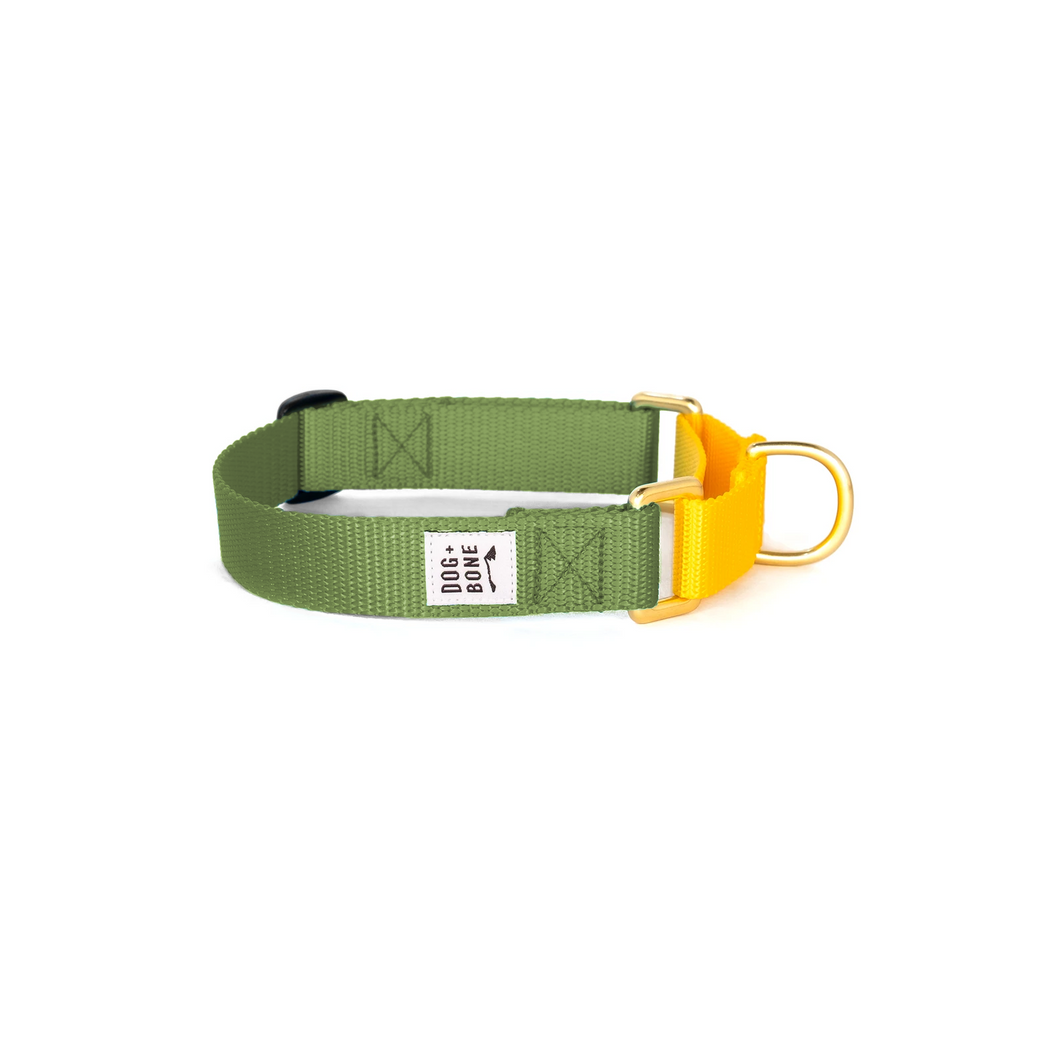 Martingale Collar - Military Green & Yellow
