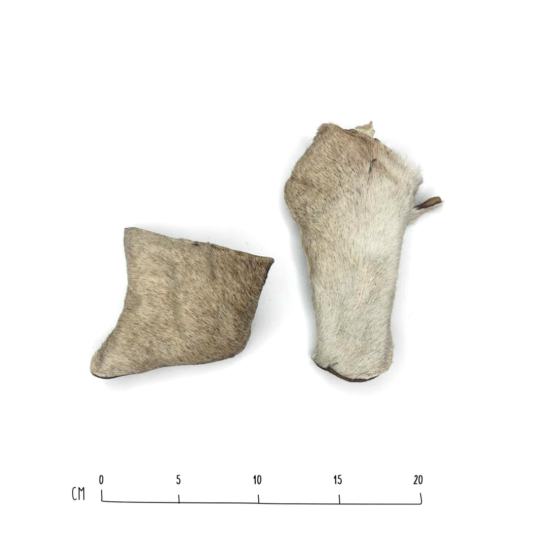 Air-Dried Cow Skin
