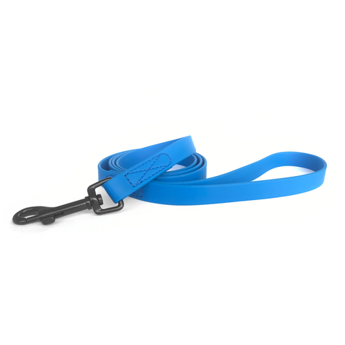 Nimble Leash - Blue