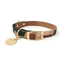 Load image into Gallery viewer, Two Tone Dog Collar : Shapes