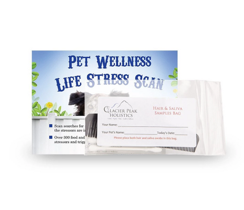 Pet Wellness Stress Scan (allergy test)