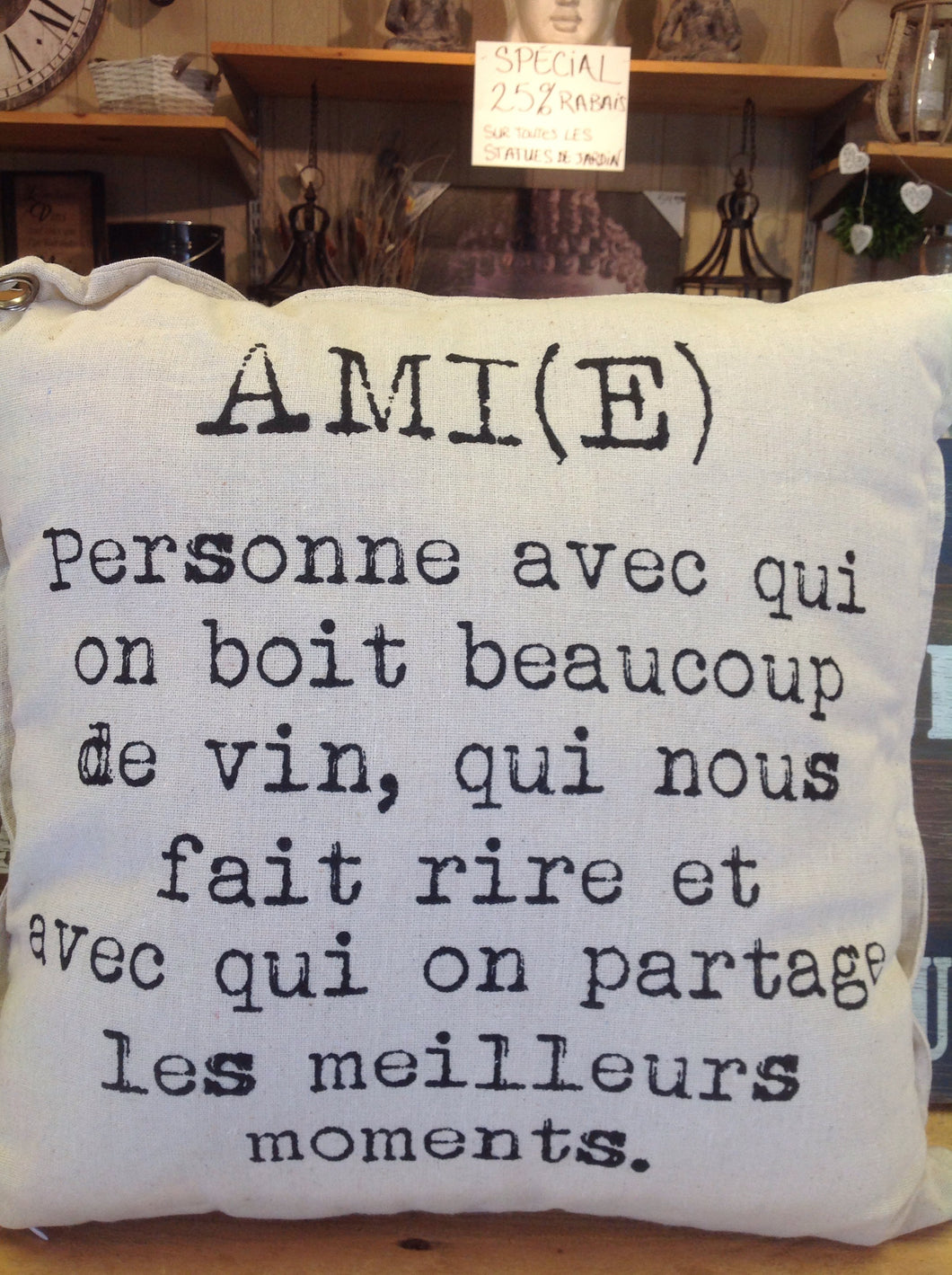 coussin ami