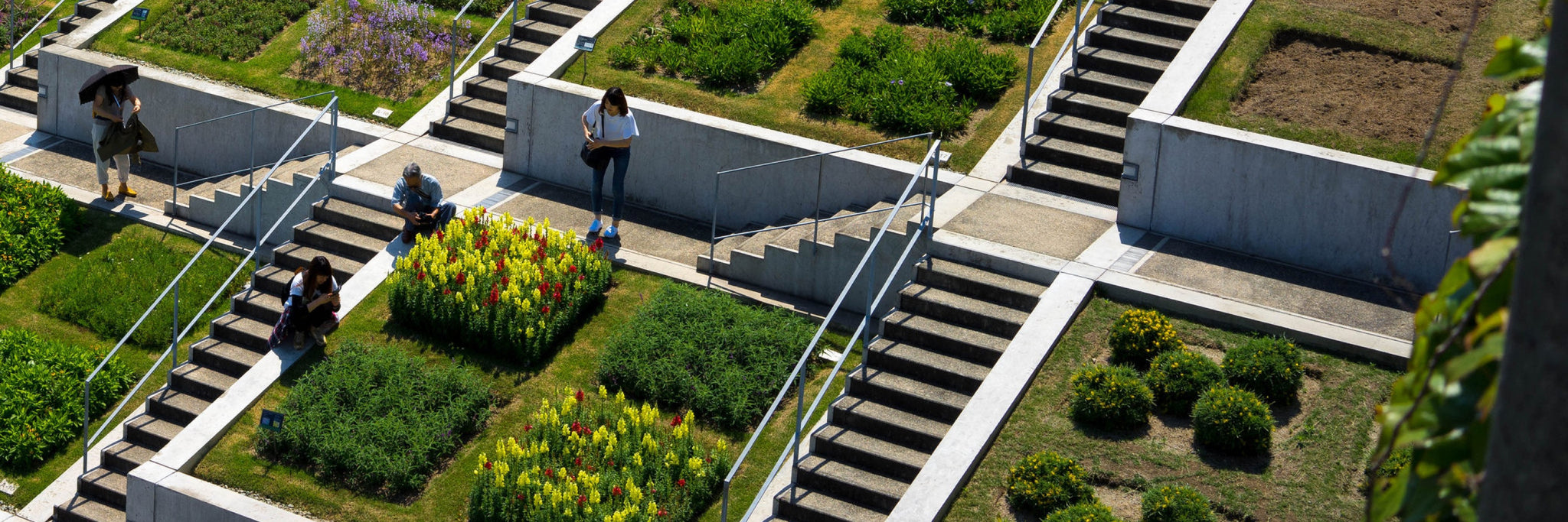 Cool Neighborhoods - Greening Roofs in NYC