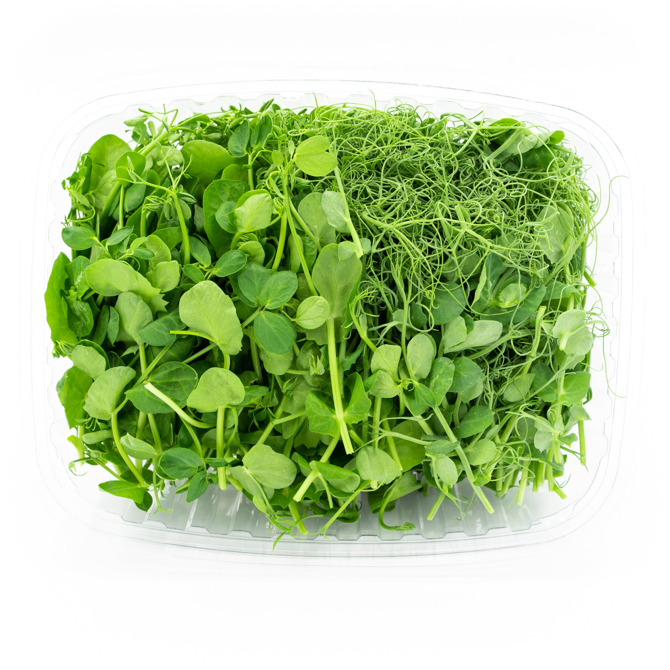 Pea Shoots Duo