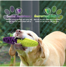 Load image into Gallery viewer, Fluffy Paws Dog Toy, Durable Squeaky Stick-Shaped Pet Toy, [Dual Color] Rubber Dental Chewing Biting Pet Toy for Small and Medium Dog Puppy,Green/Purple