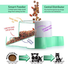 Load image into Gallery viewer, Fluffy Paws Smart Pet Tri-Feeder - Healthy Slow Eating Feeder Designed for Multi-Dogs or Cats with Non-Slip Base Pads, Anti-Gulping & Stop Food Competition, Dispense Dog or Cat Food, BPA Free