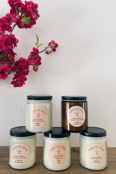 Small Handcrafted Coconut Wax Candles