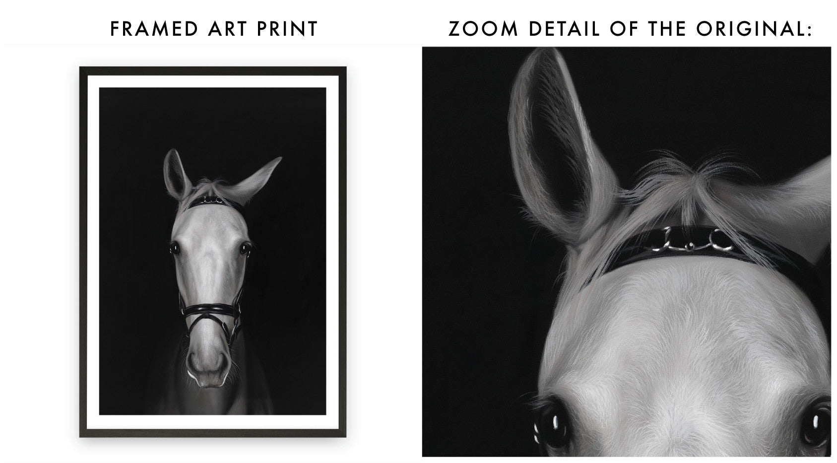 Horse In Shadows Art Print By The Print Emporium