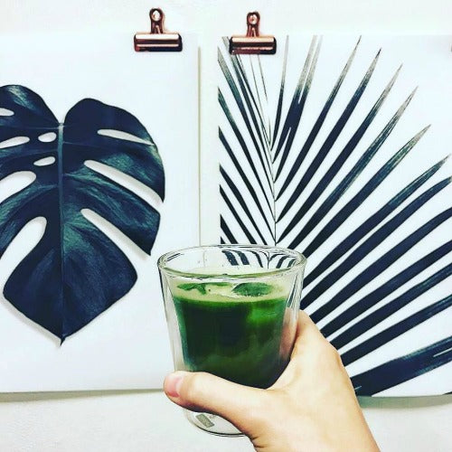 Drinking matcha has been a tradition for a long time and proven to have many health benefits