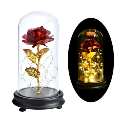 Rose In Flask Beauty And The Beast Gold-plated Red Rose With LED Light In Glass Dome For Wedding Party Mother's Day Gift - Vietees Shop Online