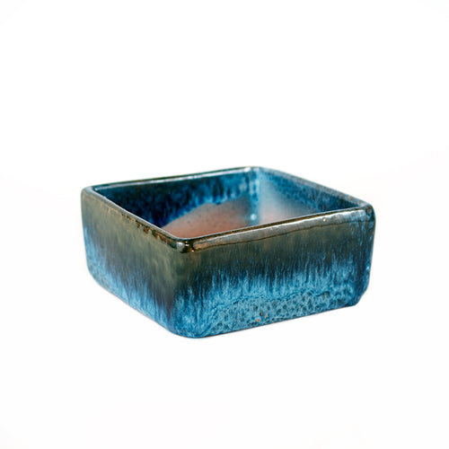 small blue glazed square dish planter sold at Bear Valley Nursery