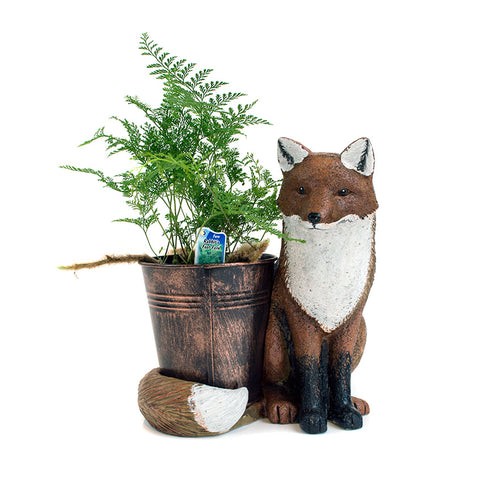 Fox Animal Planter gift with display plant sold at Bear Valley in Lincoln City
