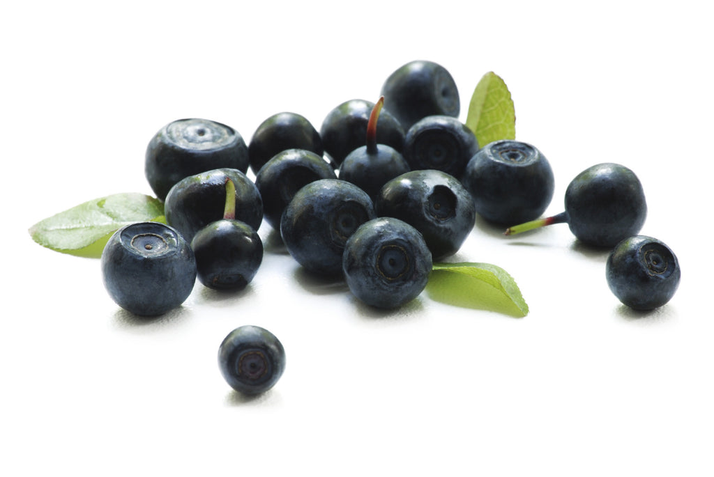 BLUEBERRY FUSION MICRO-SCRUB (EXFOLIATING) -The Body Deli U.S.A. - 2