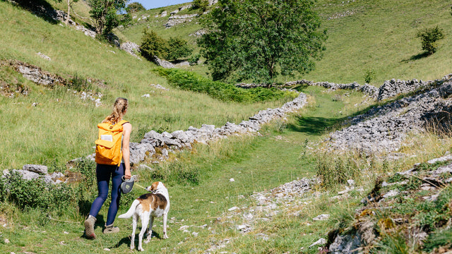 Athena Mellor walks with her Core Roll Pack 20L and Oslo the dog.