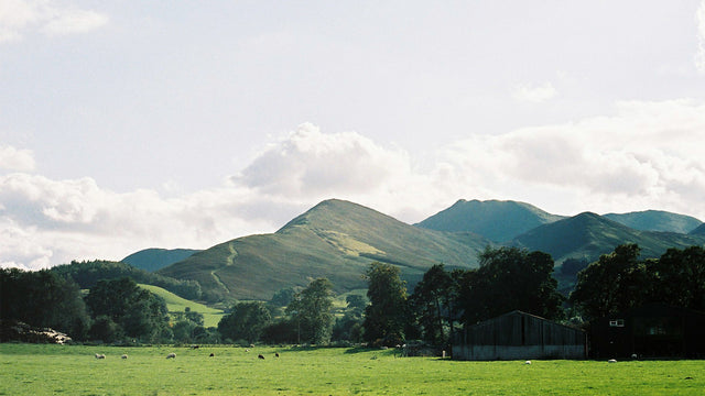 Catbells, one of the beautiful views from Millican HQ.