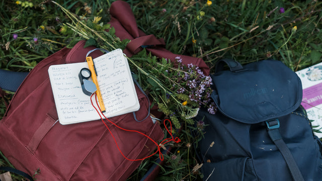Everyday Adventure | An afternoon foraging </br>with Miscellaneous Adventures