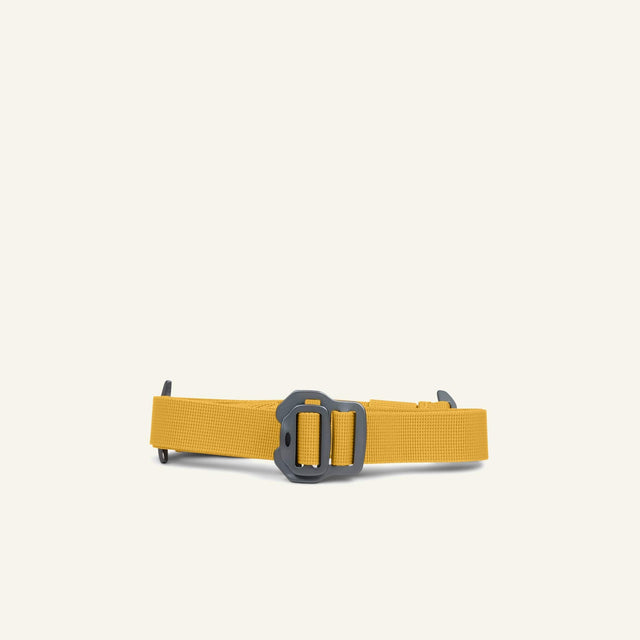 The Mavericks | Waist Strap (Gorse) available from Millican
