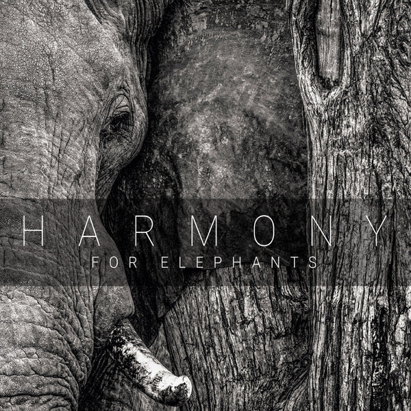 HARMONY FOR ELEPHANTS CD
