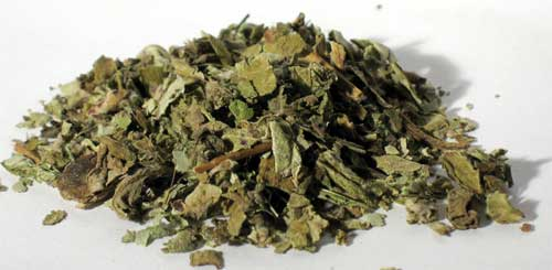 Coltsfoot Leaf 2oz (Tussilago farfara)