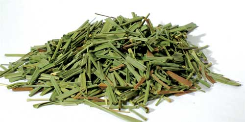 Lemongrass cut 2oz (Cymbopogon citratus)
