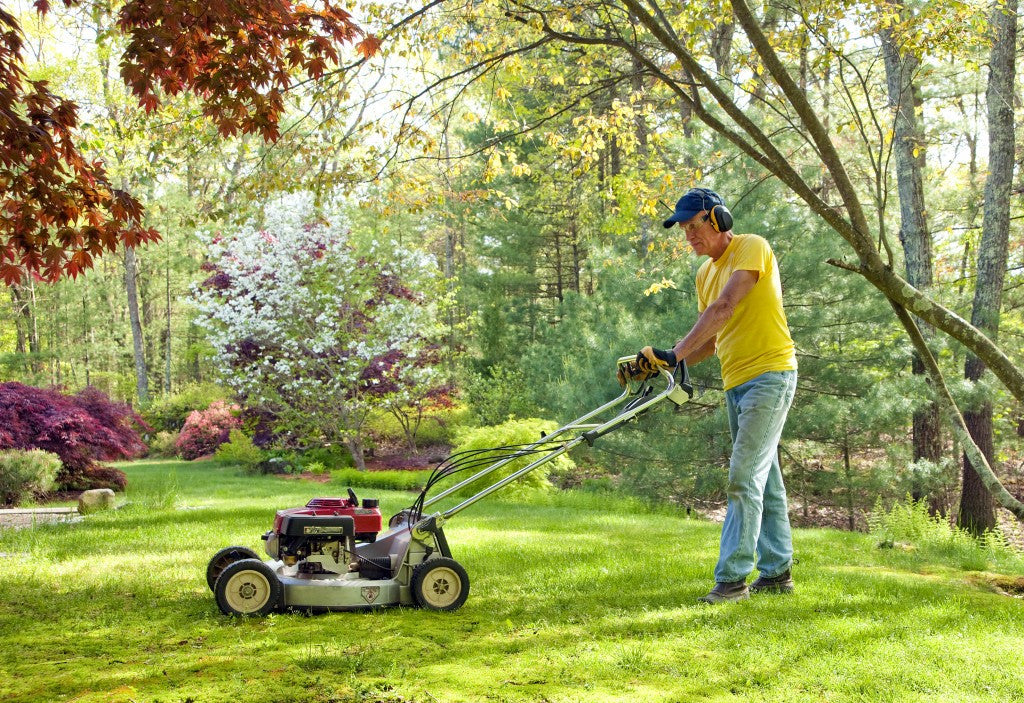 5 Ways to Get Your Lawn Ready for Spring
