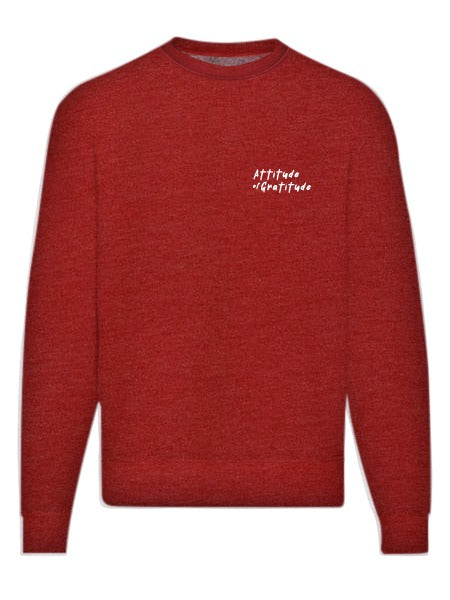 AOG Embroidered Sweatshirt in Washed Red