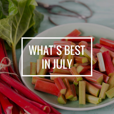 What's Best in July