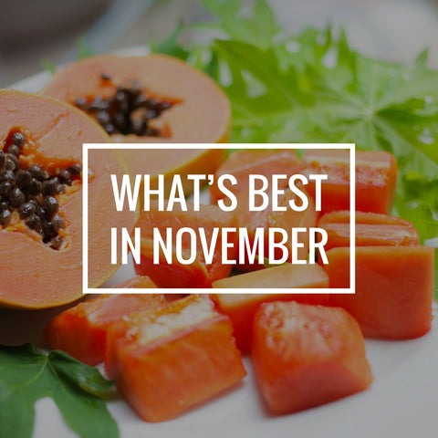 What's Best in November