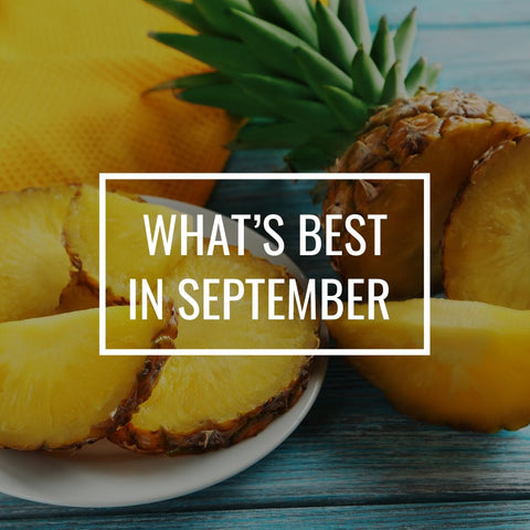 What's best In September