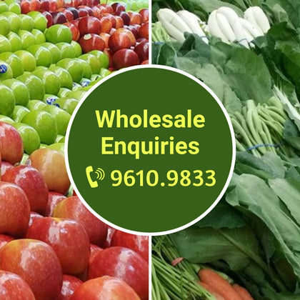 Wholesale Enquiries - 9610.9833