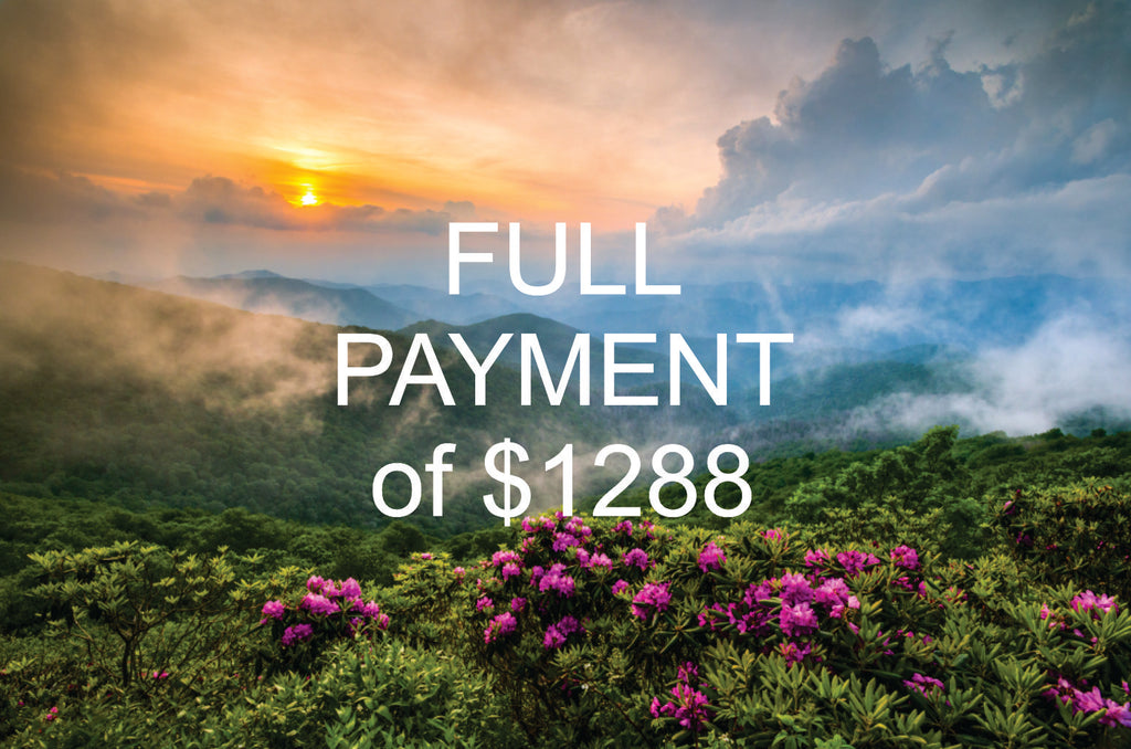 Asheville NC Conference - April 26 - 29, 2020 - <br>FULL PAYMENT <br>(price is per person)