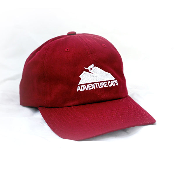 Adventure Cats Dad Hat