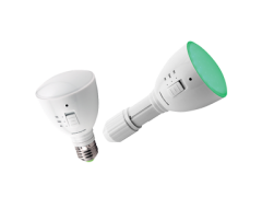 AgroLED Green Flashlight/Lamp