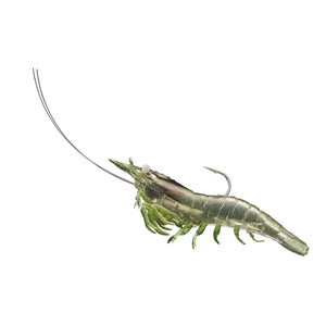 "LiveTarget Lures Rigged Shrimp Soft Plastic Saltwater, 3"", #1/0 Hook, Variable Depth, Grass Shrimp"