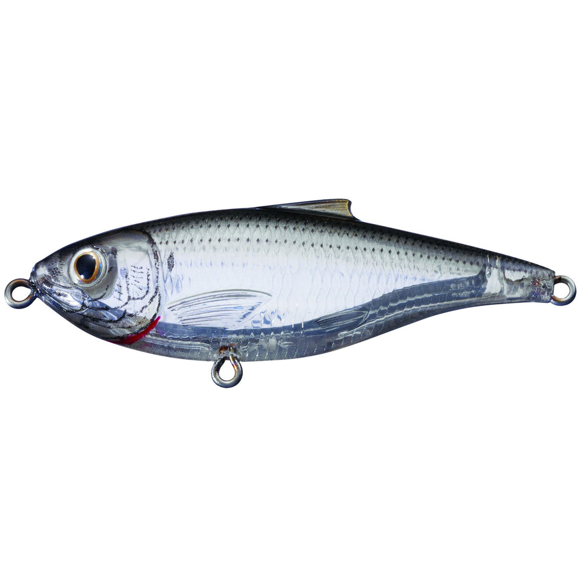 "LiveTarget Lures Scaled Sardine, Pilchard, Whitebait Twitchbait  Saltwater, 3"", #6 Hook, 0'-1' Depth,Ghost/Natural"