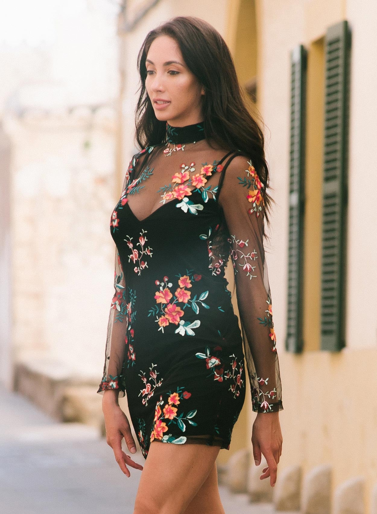 Love Embroidered Bodycon Mesh Dress