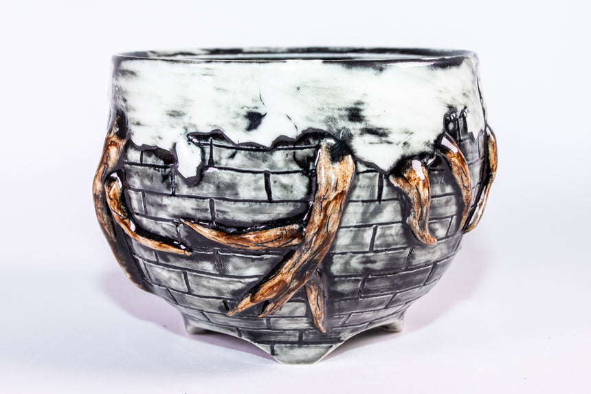 Gnarly Tree Root bowl - Fractured series