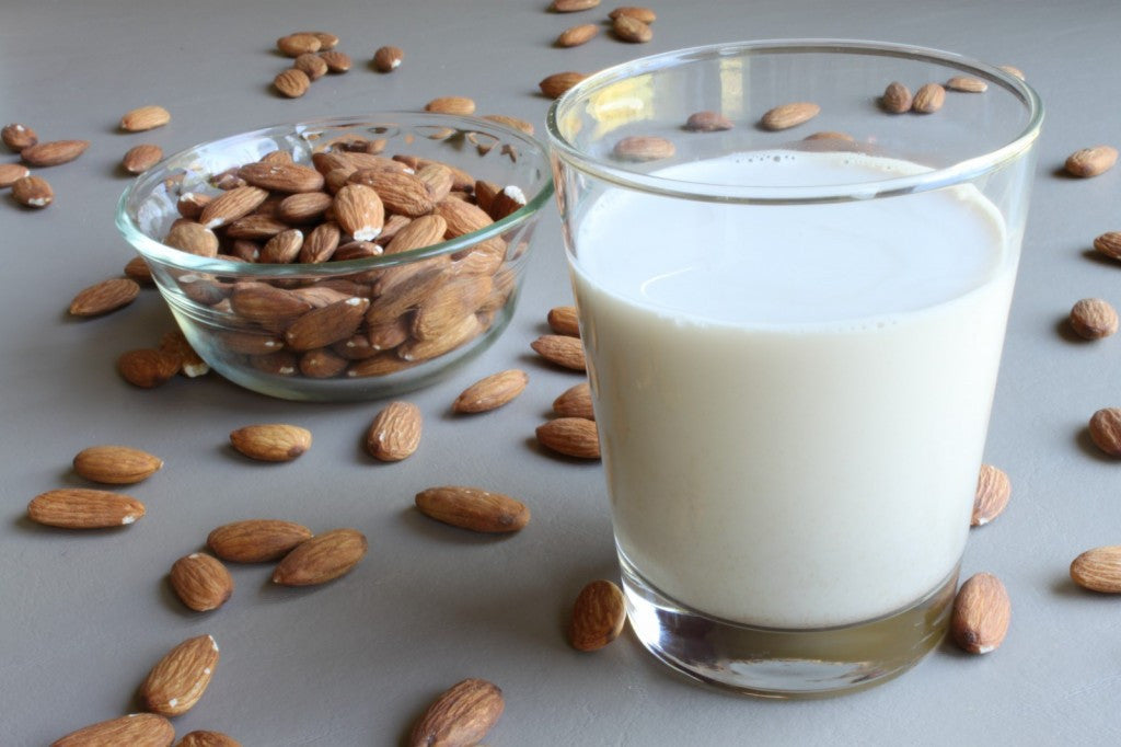 6 Best Milk Alternatives
