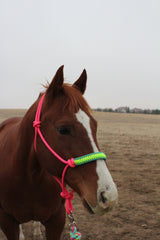 Equine Essentials Cobra Halter