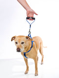 TopDog™ Leash for Puppies and Large Dogs - No Chew, Heavy Duty, Adjustable Length (up to 6 feet)