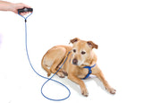 Core™ Leash for Puppies and Large Dogs - No Chew, Heavy Duty, Fixed Length, 6 feet