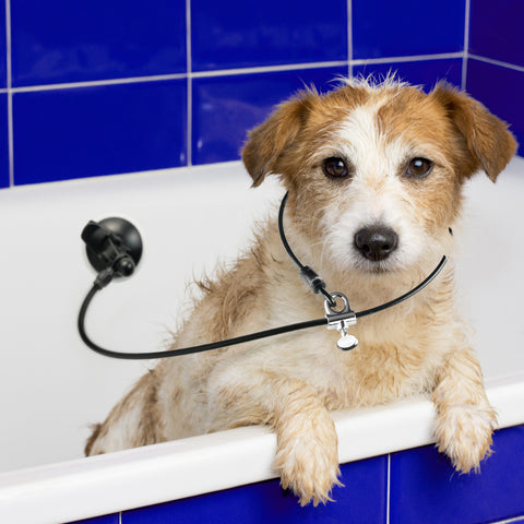 Dog Bathing Tub Restraint - Tether Strap Keeps Dog in Bathtub - Upgraded Suction Cup for Any Surface