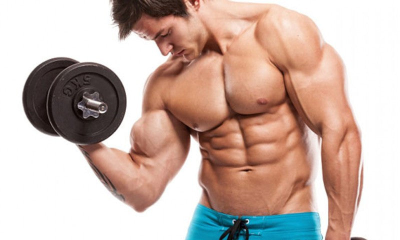 Best Bicep Workout To Get Big Biceps