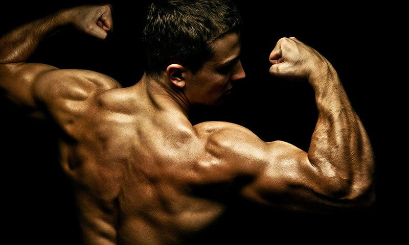 The Ultimate Back Workout For Mass & Strength