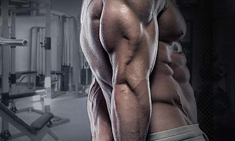 5 Best Tricep Exercises For Building Mass