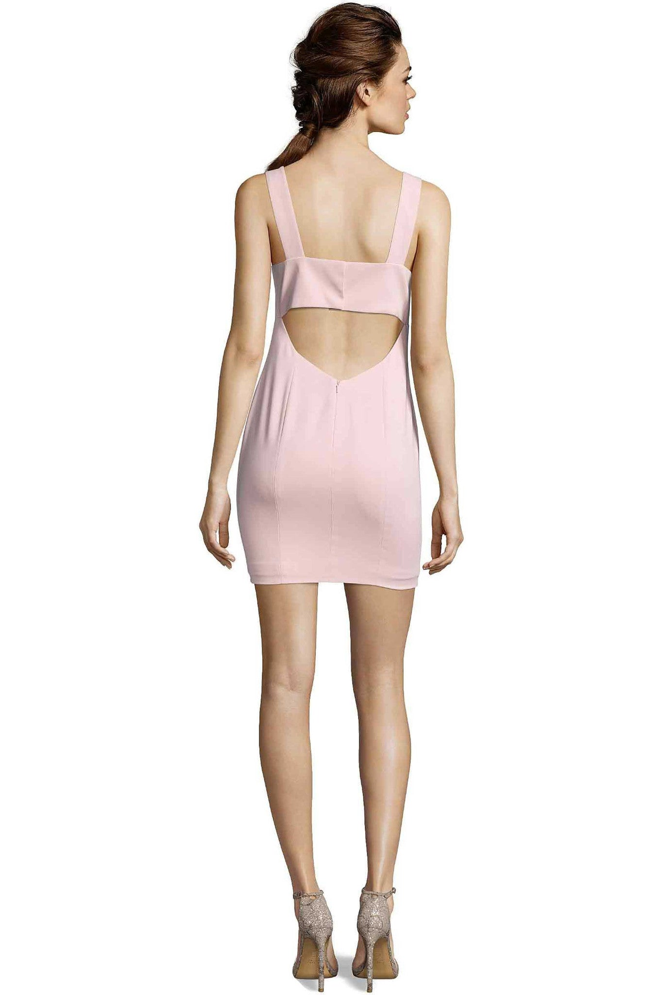 Jay Godfrey Blush Pink Mini Dress - Back View
